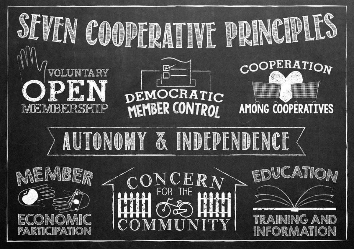 koop ilkeleri
